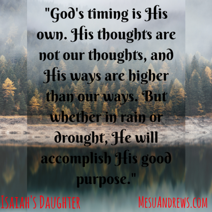 _God's timing is His own. His thoughts are not our thoughts, and His ways are higher than our ways. But whether in rain or drought, He will accomplish His good purpose._